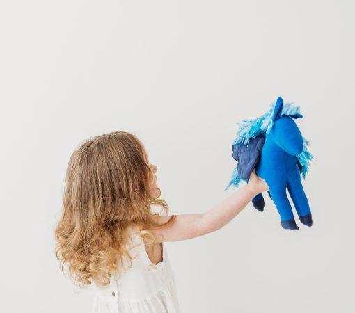 wing horse unicorn